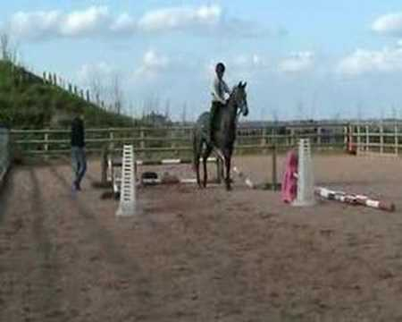 Training a 4yr old to Show Jump