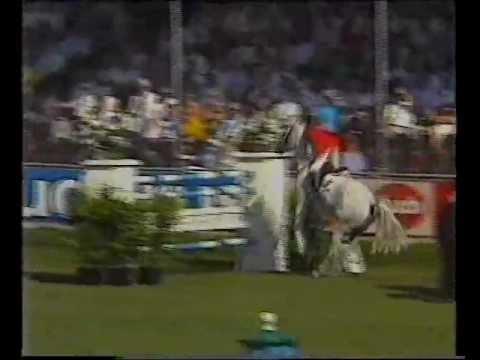 John Whitaker & Milton – 1989 European Champions