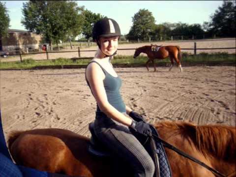 Reiten, Pferde