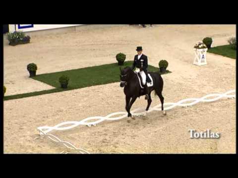 stallion collection 2012: Totilas- Part I