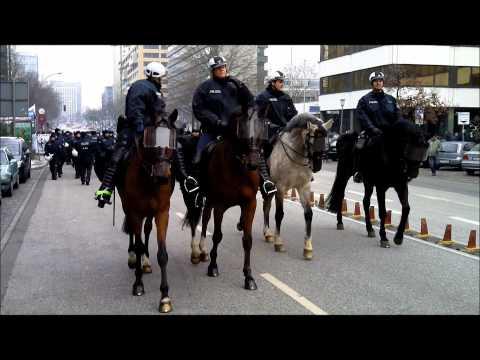 Polizeipferde im Einsatz