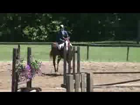 2'3″ Basic Equitation Over Fences