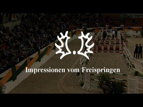 Impressionen vom Freispringen – Trakehner Hengstmarkt 2012