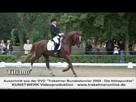 Trakehner Bundesturnier 2009