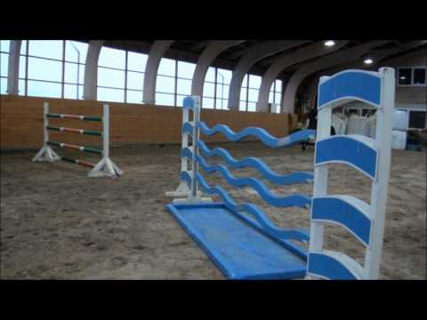 Grand Prix Showjumping Horse For Sale (8 years)