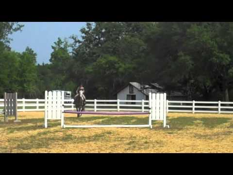 FOR SALE: So Well Heeled — Big Eq Prospect