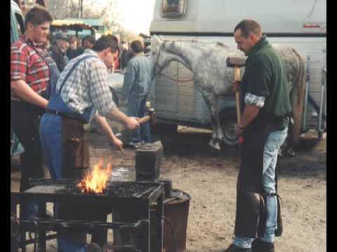Burgdorfer Pferdemarkt [Impressionen]