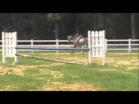 FOR SALE :: So Well Heeled – Big Eq Prospect