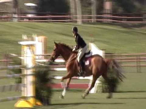 Finnvarra Show Jumping
