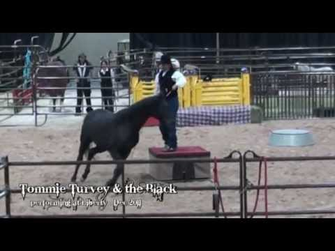 "Tommie Turvey and his horse ""the Black"" at Liberty"