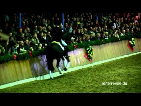 Video-Aufzeichnung: Totilas' Auftritt in Vechta