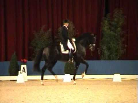 Moorlands Totilas (Grand Prix debut as 8 year old)
