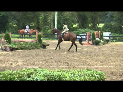 2010 – Lizzy & Hercules – Three Year Old International Hunter Futurity Competition