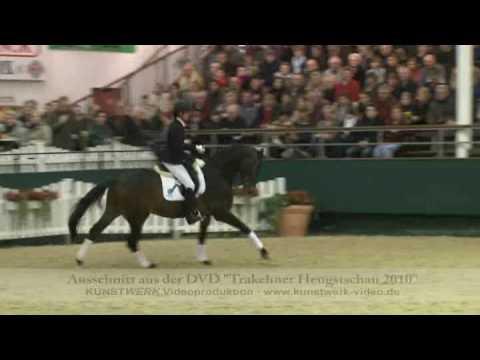 Herbstbach – Trakehner Hengstschau 2010