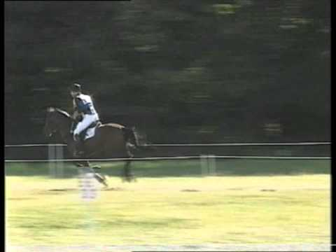 Hannibal – Trakehner Stallion – Blenheim CCI***, Cross Country
