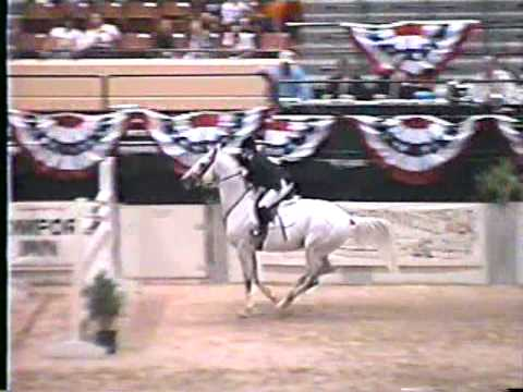Special Memories trakehner show jumping  stallion-Capital Challenge Grand Prix