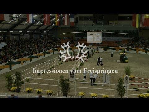 Impressionen vom Freispringen – Trakehner Hengstmarkt 2013
