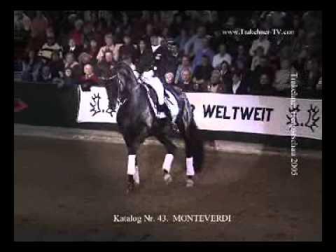 Trakehner Hengst Monteverdi mit Fie Skarsöe Horse World Expo