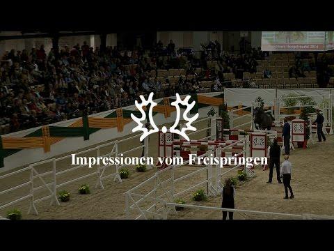Impressionen vom Freispringen – Trakehner Hengstmarkt 2014