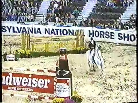 Special Memories-trakehner show jumping stallion–PN GP-FEI/1.6m (Springen-hengste)