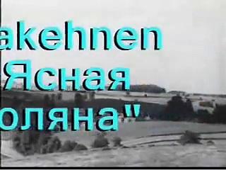 Gross Trakehnen, Конезавод в пос. Ясная Поляна, Trakehner